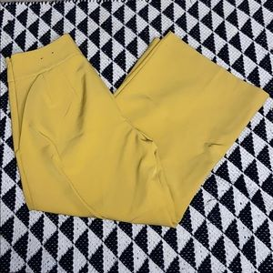NWOT! Express High Waisted Cropped Wide Leg Pant